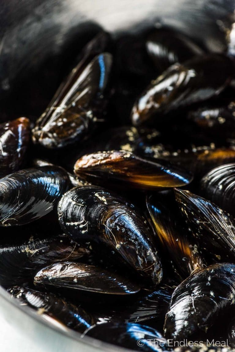 how do you store mussels