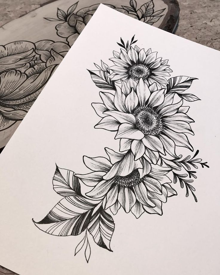 Sunflowers composition with hive ?? #linework Done by @giulia_eightlines