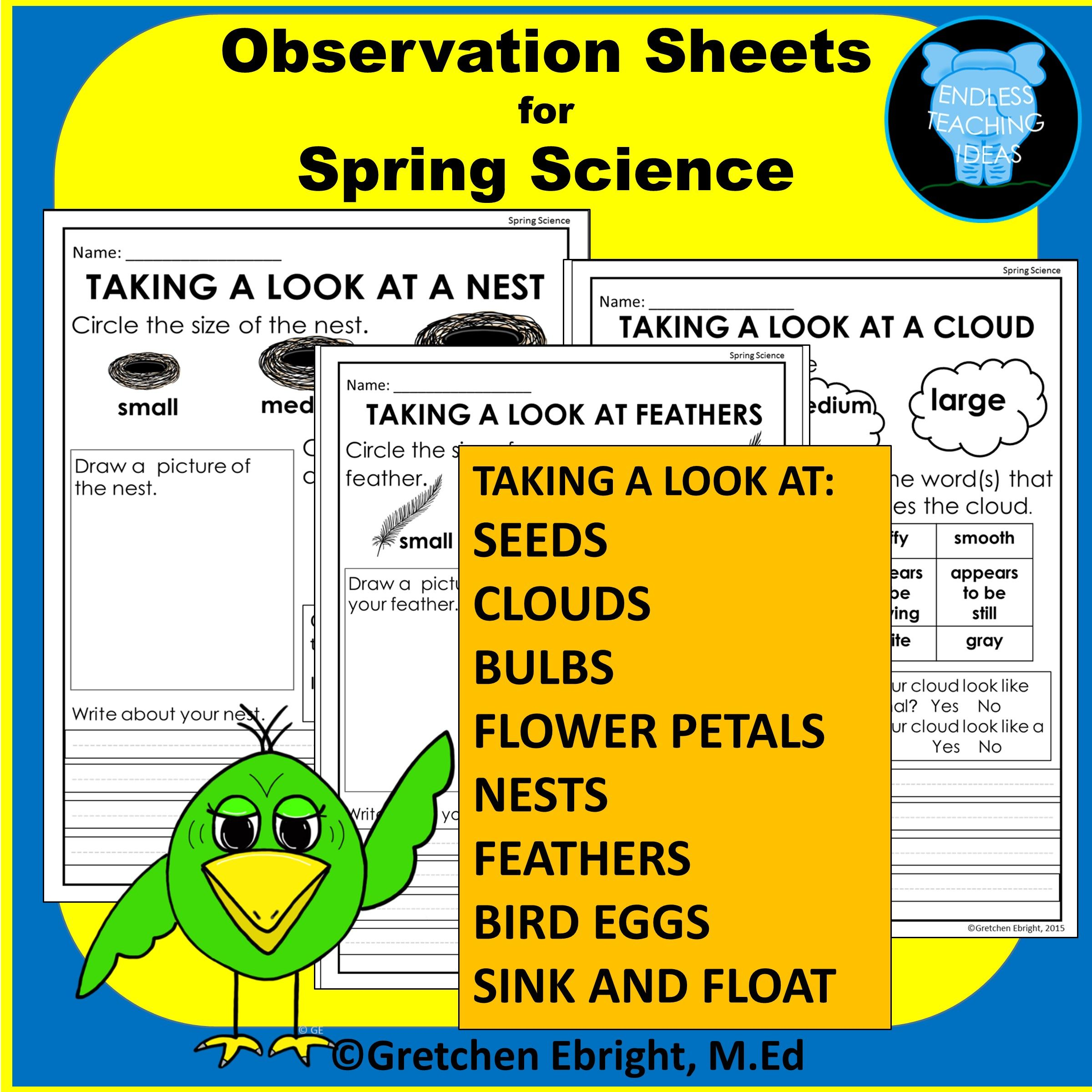 Observation Sheets For Spring Science Nests Clouds