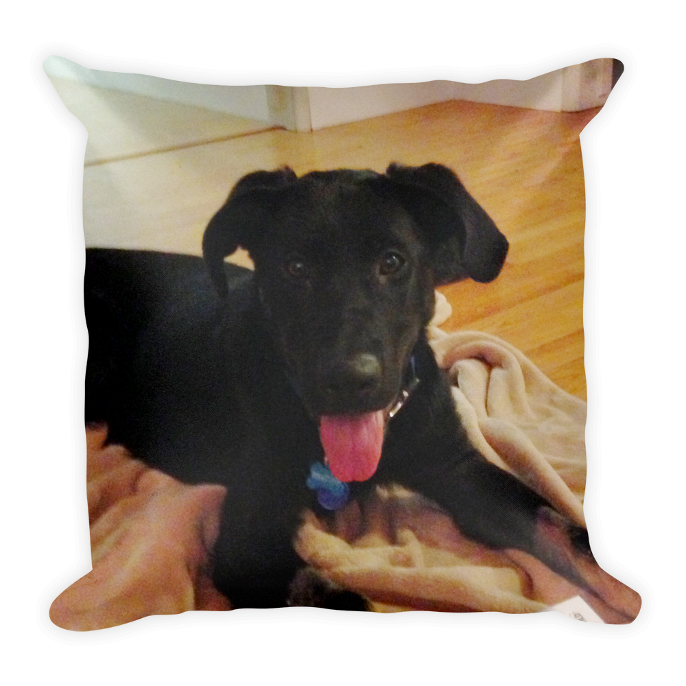 Pillow YOUR Pet Your pet, Pets, Animal pictures