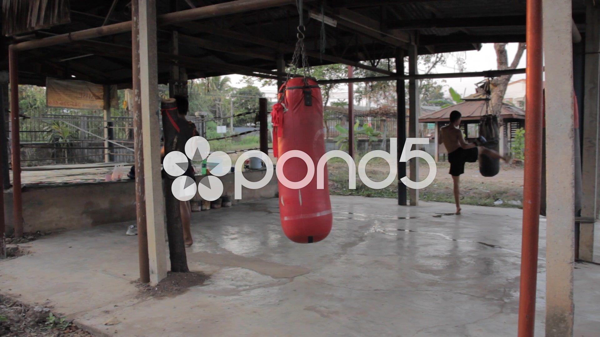 Teenage Fighter Training Muay Thai In Gym Thailand Stock Video 51458506 Hd Stock Footage Muay Thai Gym Design Thailand