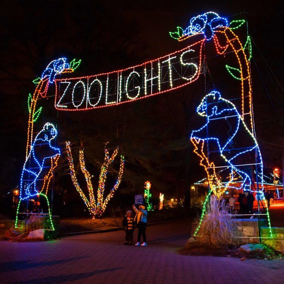 2020 Atlanta Christmas Events 50 Things To Do In Georgia Nyc Christmas Best Christmas Lights Best Christmas Light Displays