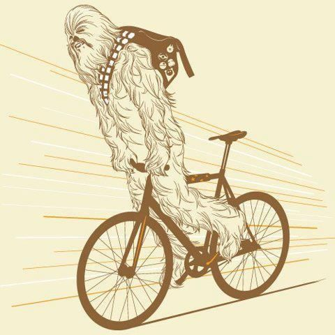 chewy skid