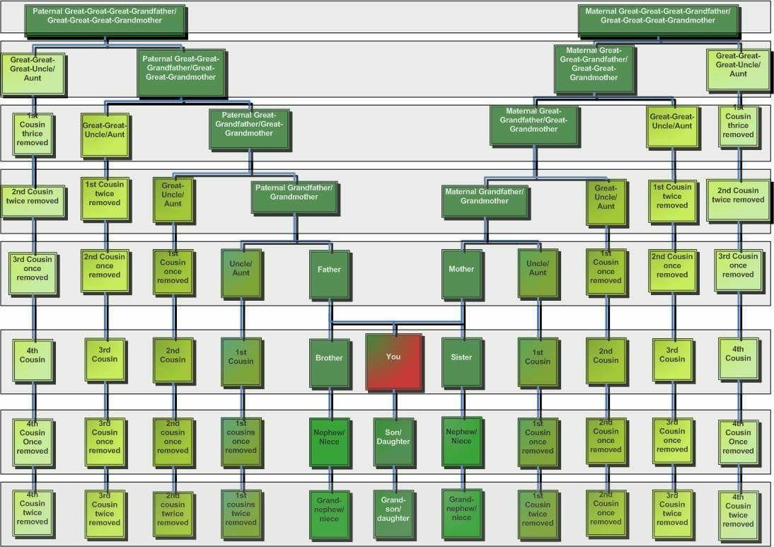 hight resolution of cousins chart