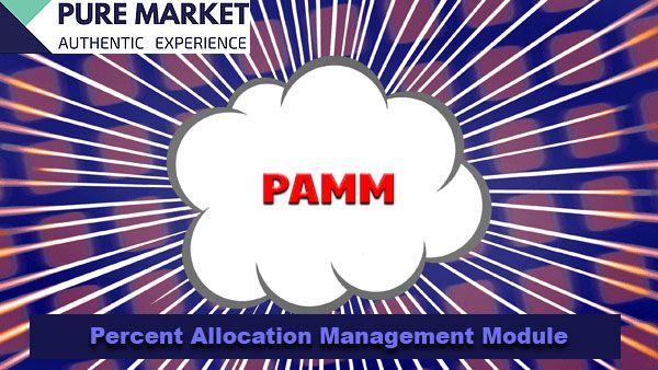 Pure Market E Un Trading Forex Broker Stp Con Clienti In 56 Paesi