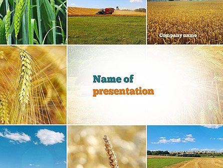 Httppptstarpowerpointtemplatewheat cultivation httppptstarpowerpointtemplatewheat presentation templates champskeynoteagriculturepresentation layout toneelgroepblik Images