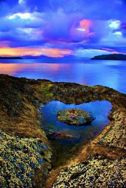 Pin By Through The Agest On Art Beautiful Nature Heart In Nature Beautiful Places