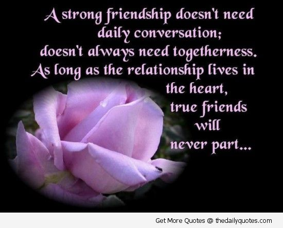 Bon Strong Friendship Doesnu0027t Need Daily Conversation ~ Friendship Quote
