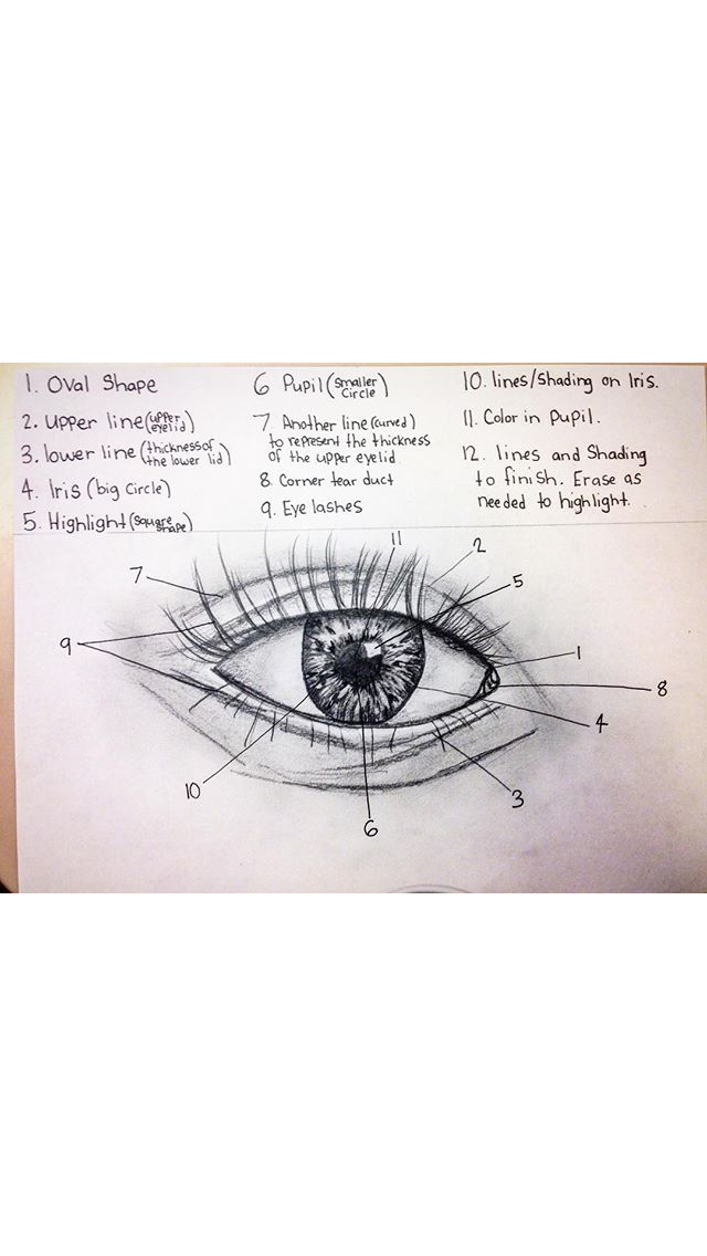 Unique Eye Anatomy Tear Duct Image - Human Anatomy Images ...