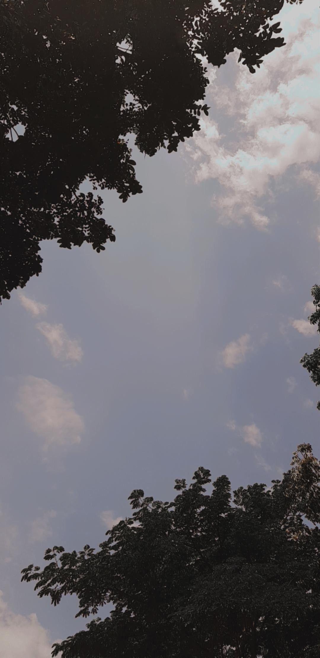 Blue Sky Di 2020 Pemandangan Fotografi Alam Fotografi Perjalanan