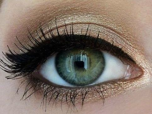 Feline Liner + Mascara + Iridescent + Beige Eyelid & Under Eye