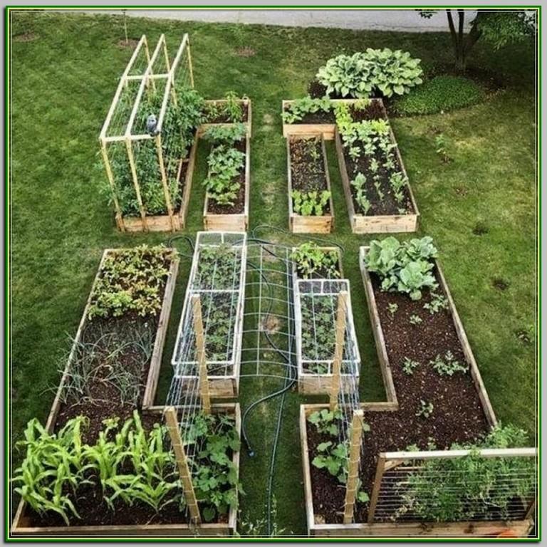 5 Vertical Vegetable Garden Ideas For Beginners: 30+ Amazing Gardening Ideas To Inspire You