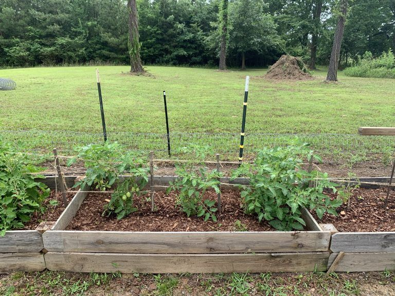 3 Raised Bed Soil Mixes Compared The Beginner's Garden