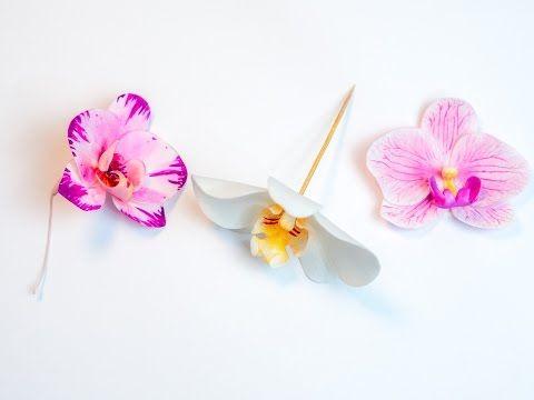 Orchidee aus Blütenpaste / Tutorial Phalaenopsis (3 Methoden/ 6 ...