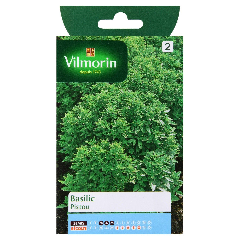 Basilic pistou VILMORIN 1 g en 2020 Graine de basilic