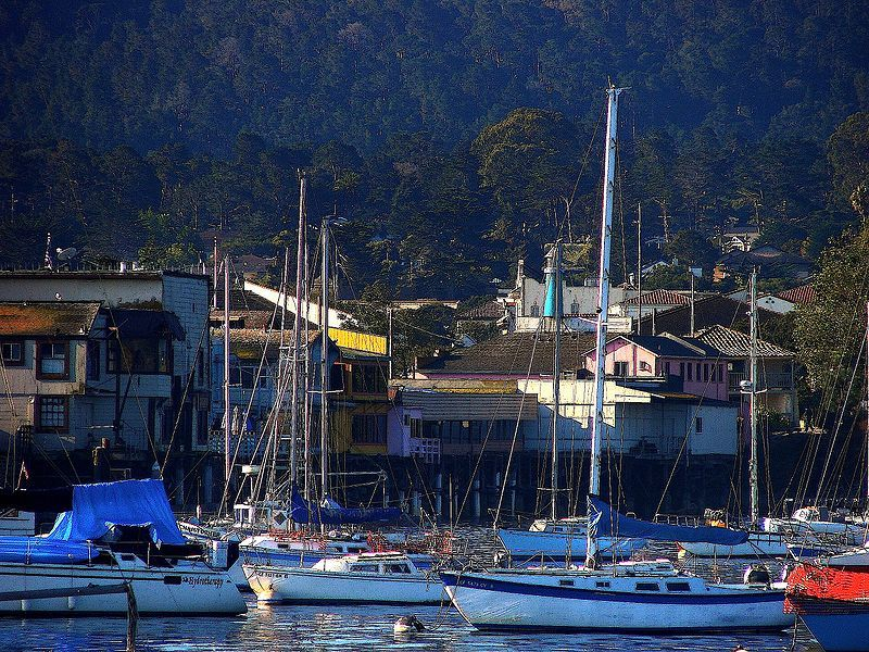 Physical Therapist Assistant Job Monterey CA Physical