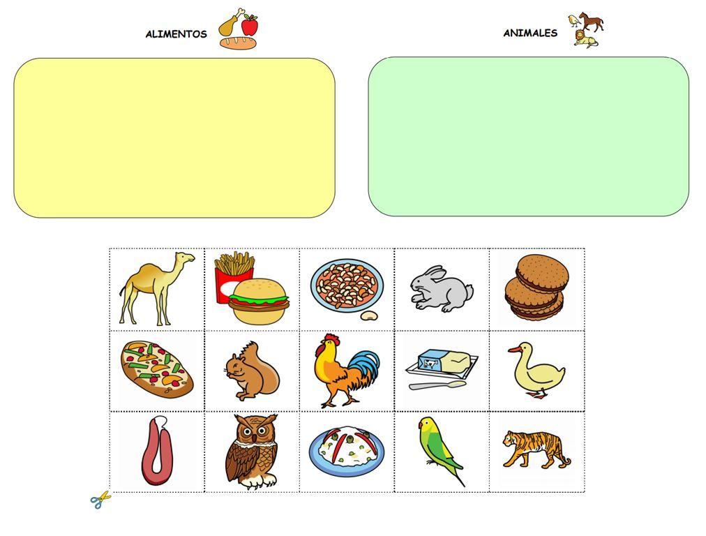 Material Para Clasificar Por Campos Semanticos El Vocabulario De