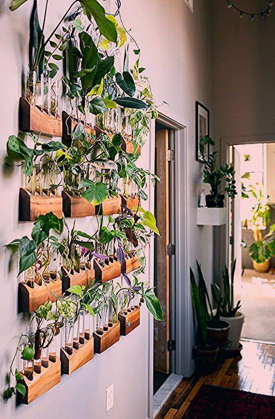Photo of 30x Verticaal tuinieren: leuke ideeën en handige tips | Inrichting-huis.com
