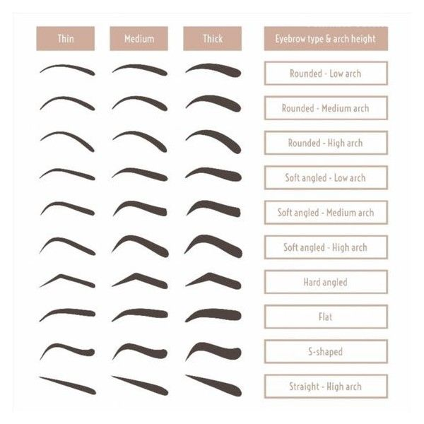 Eyebrow shapes. Various types of eyebrows. Classic type and other. ❤ liked on Polyvore featuring beauty products, makeup, eye makeup, eyebrow cosmetics, brow makeup, eye brow makeup and eyebrow makeup