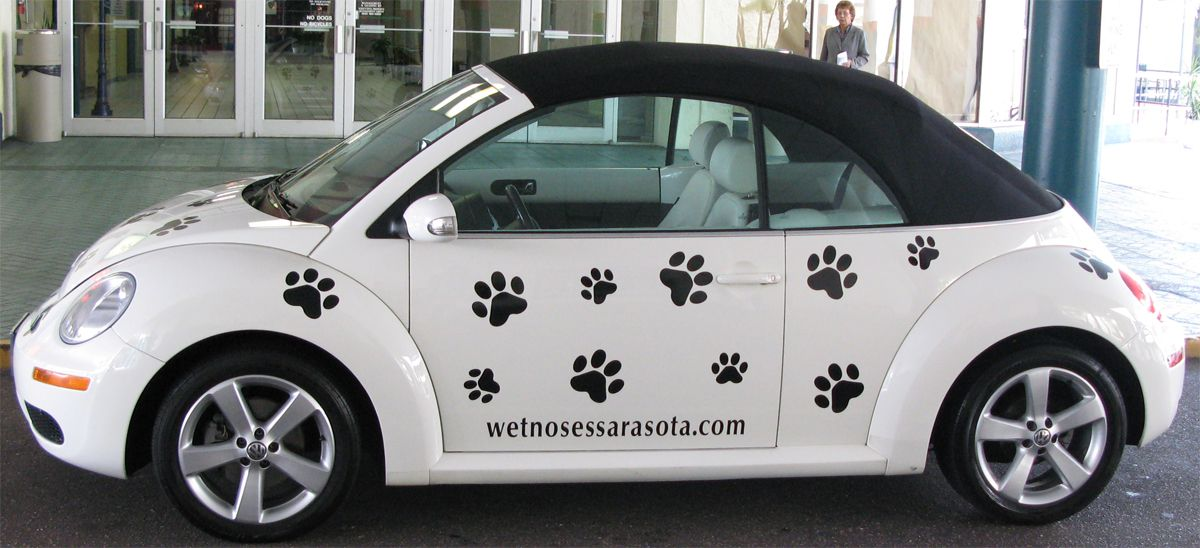 Our Sarasota Pet Store Delivery Buggy & Pet Grooming Pick