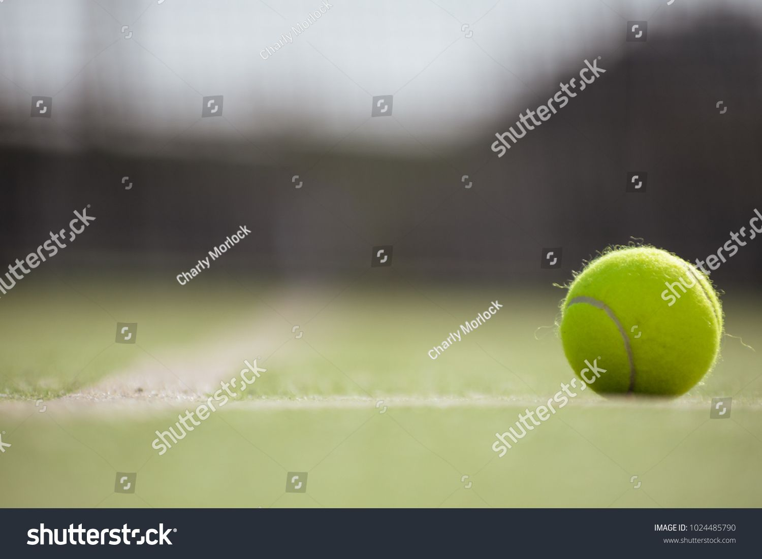 Ball Tennis Padel On Artificial Grass Track Ad Sponsored Padel Tennis Ball Track Tennis Ball Tennis Professional Business Cards