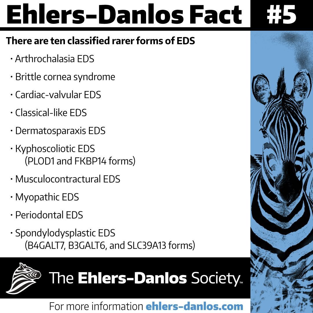 From The Ehlers-Danlos Society