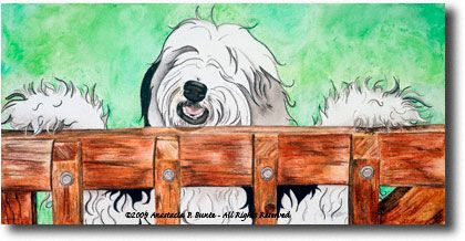 """""""What's Up"""" is a 12x24"""" colored pencil, india ink and oil pastel drawing on canvas. The image wraps around the side of the canvas so there is no need for framing. It is based on a photo I took several years ago of Oreo, one of my rainbow bridge sheepies. We were doing a """"photo session"""" in our back yard and she jumped up on the gate. I snapped the picture and out came a whimsical image that captured the silly part of her personality. $540.00 + shipping"""