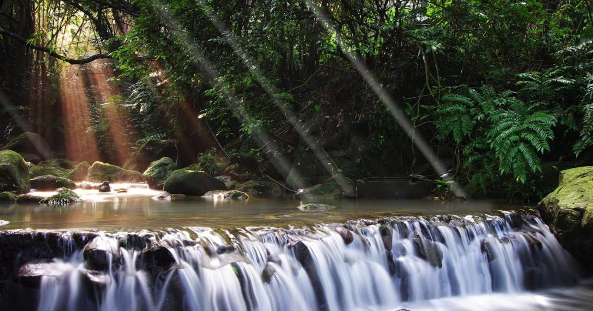 24 Waterfall Wallpaper Hd For Mobile Download Best 42 Azores 3d Animated Waterfall Wallpaper On Waterfall Waterfall Wallpaper Waterfall Waterfall Landscape