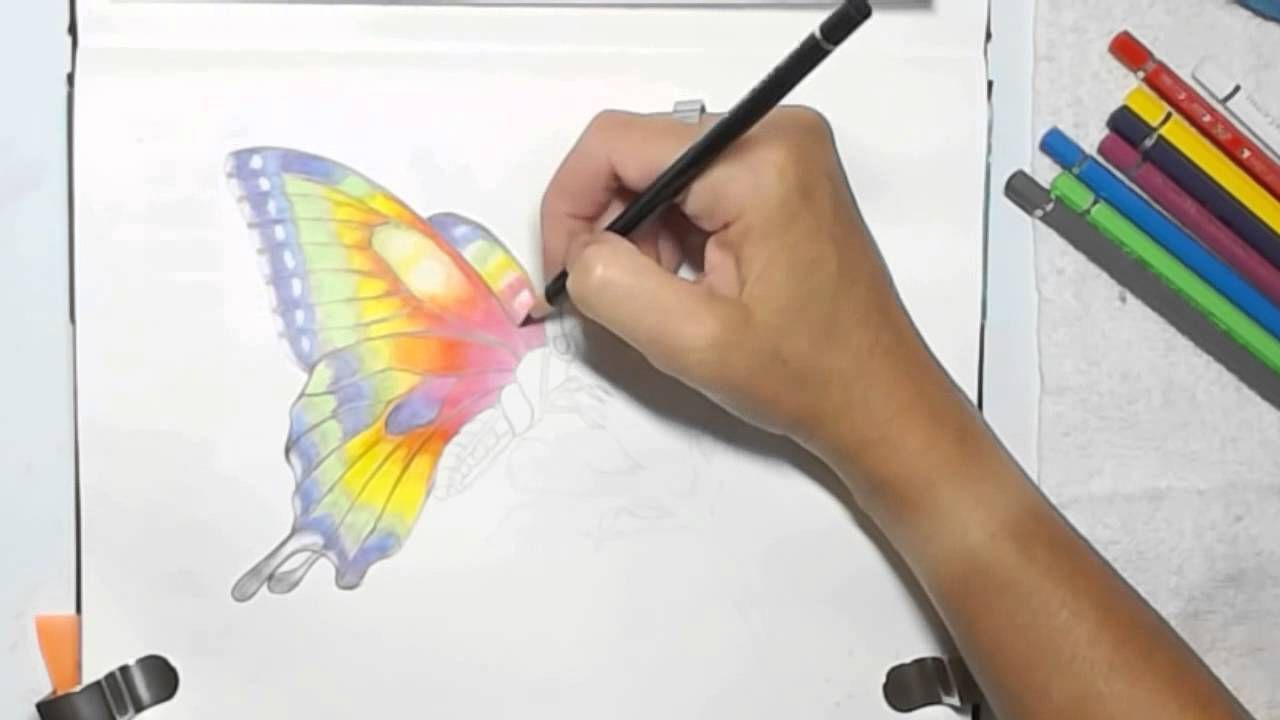 Painting A Watercolor Pencils Butterfly By Dion Dior Watercolor