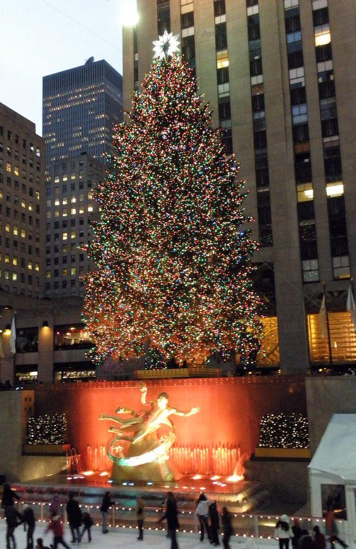 New York City Christmas Tree At Rockefeller Center