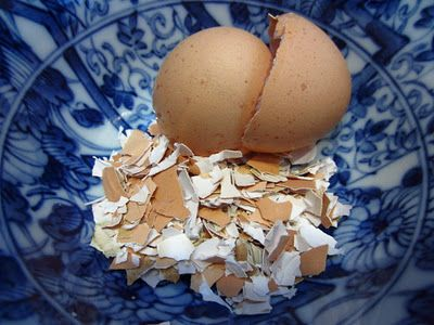 Eggshells in the garden: deter slugs and are a great source of calcium for fast growing plants!