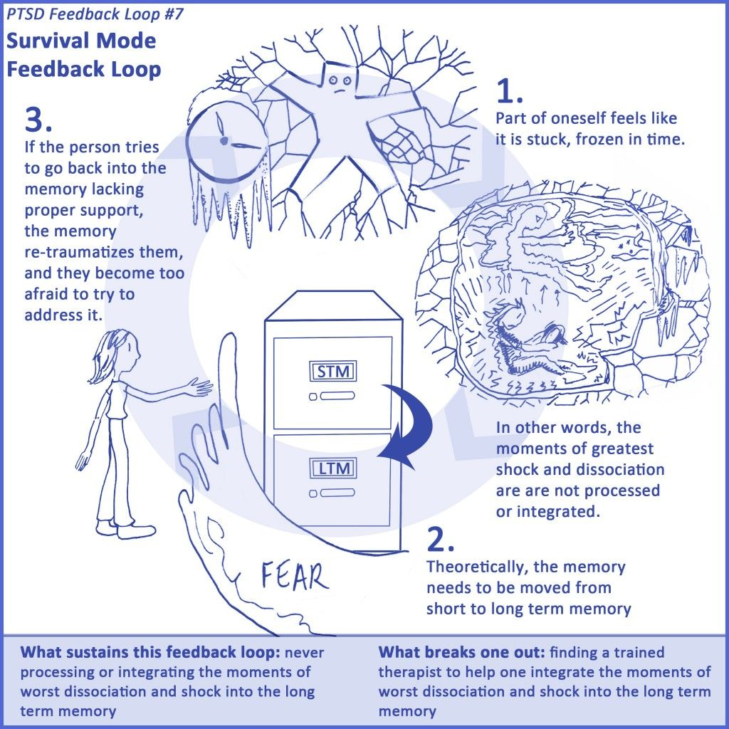 7 Ptsd Feedback Loops Healing From Trauma