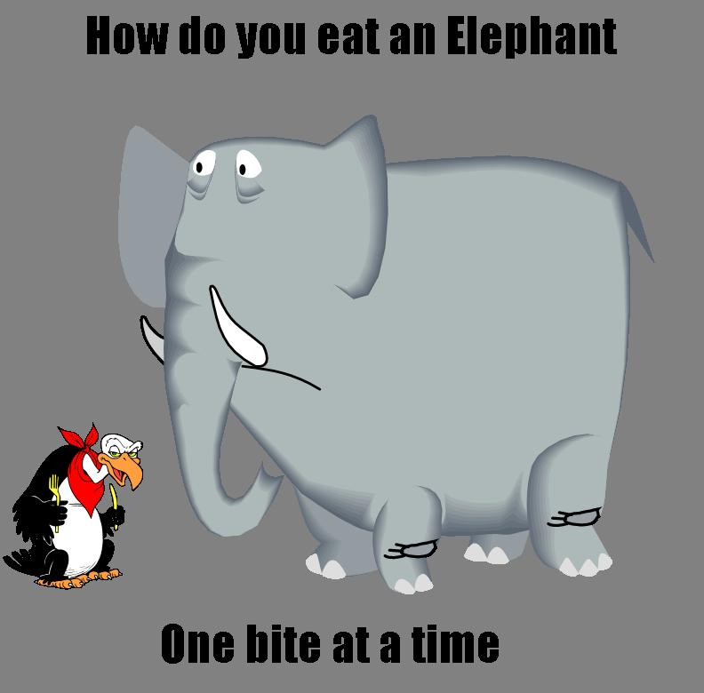 How Do You Replace Bathroom Wall Tile: How Do You Eat An Elephant?...
