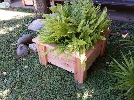 Maceta de madera eucalipto