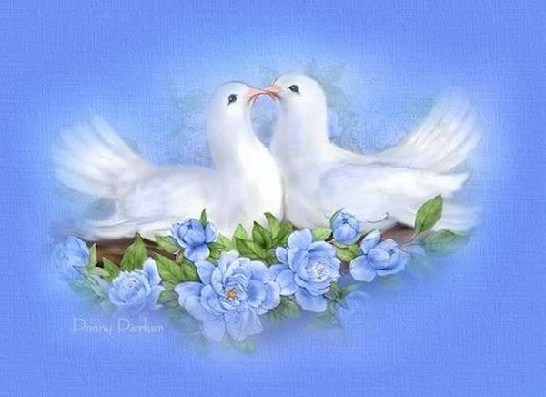 Поздравления на свадьбу открытки голуби, открытку