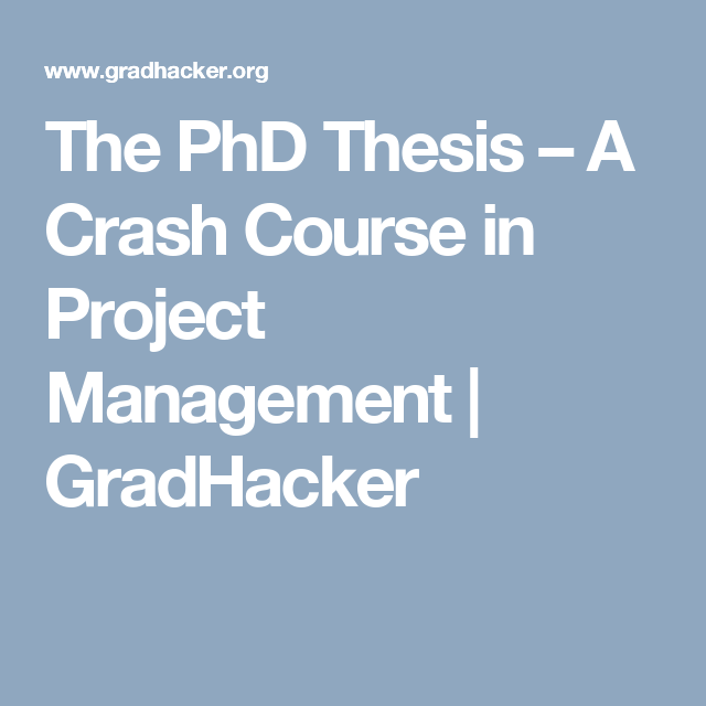 phd thesis in it project management