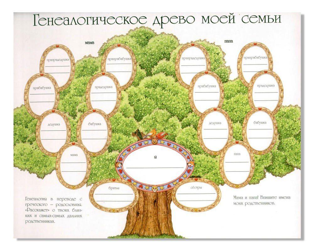 новости просто интересно генеалогическое древо семейное