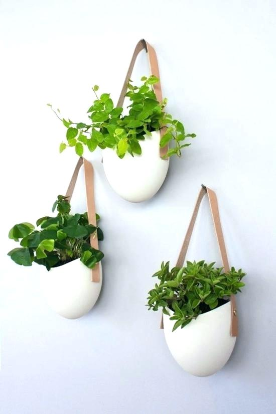 Wall Mounted Planters Indoor Wall Plant Pots Wall Flower Pots