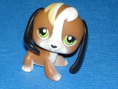 Littlest Pet Shop Lps 113 Puppy Beagle Dog Brown White Freckle