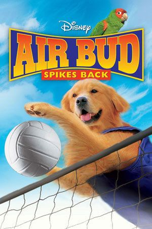 Air Bud Spikes Back With Images Air Bud Walt Disney Movies