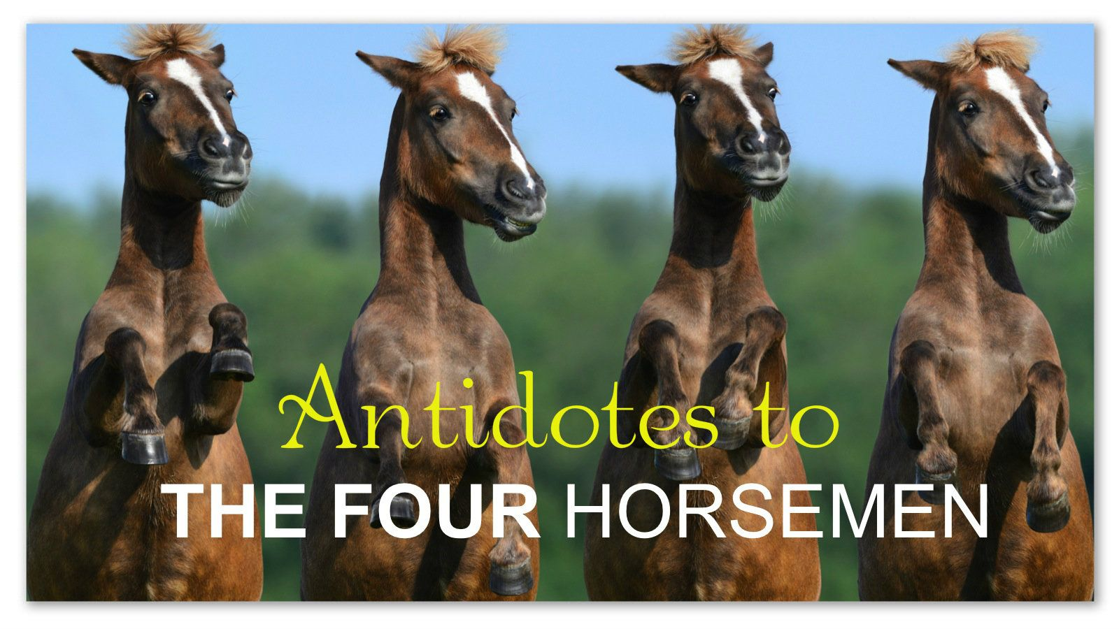 The Four Horsemen The Antidotes