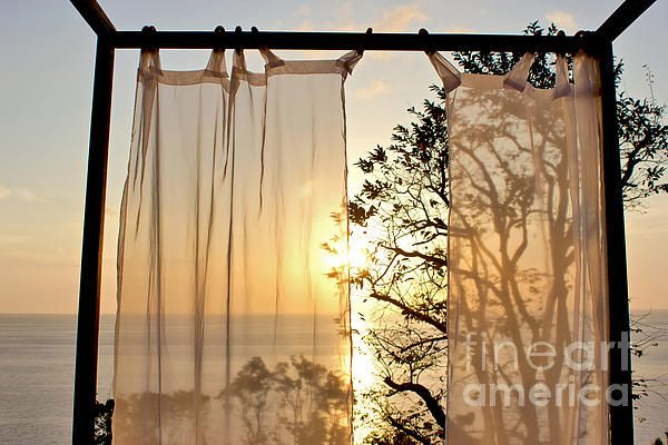 #SHADED #SUNSET - #Silhouette #Photo Quality Prints & Cards at:  http://kaye-menner.artistwebsites.com/featured/shaded-sunset-kaye-menner.html  -
