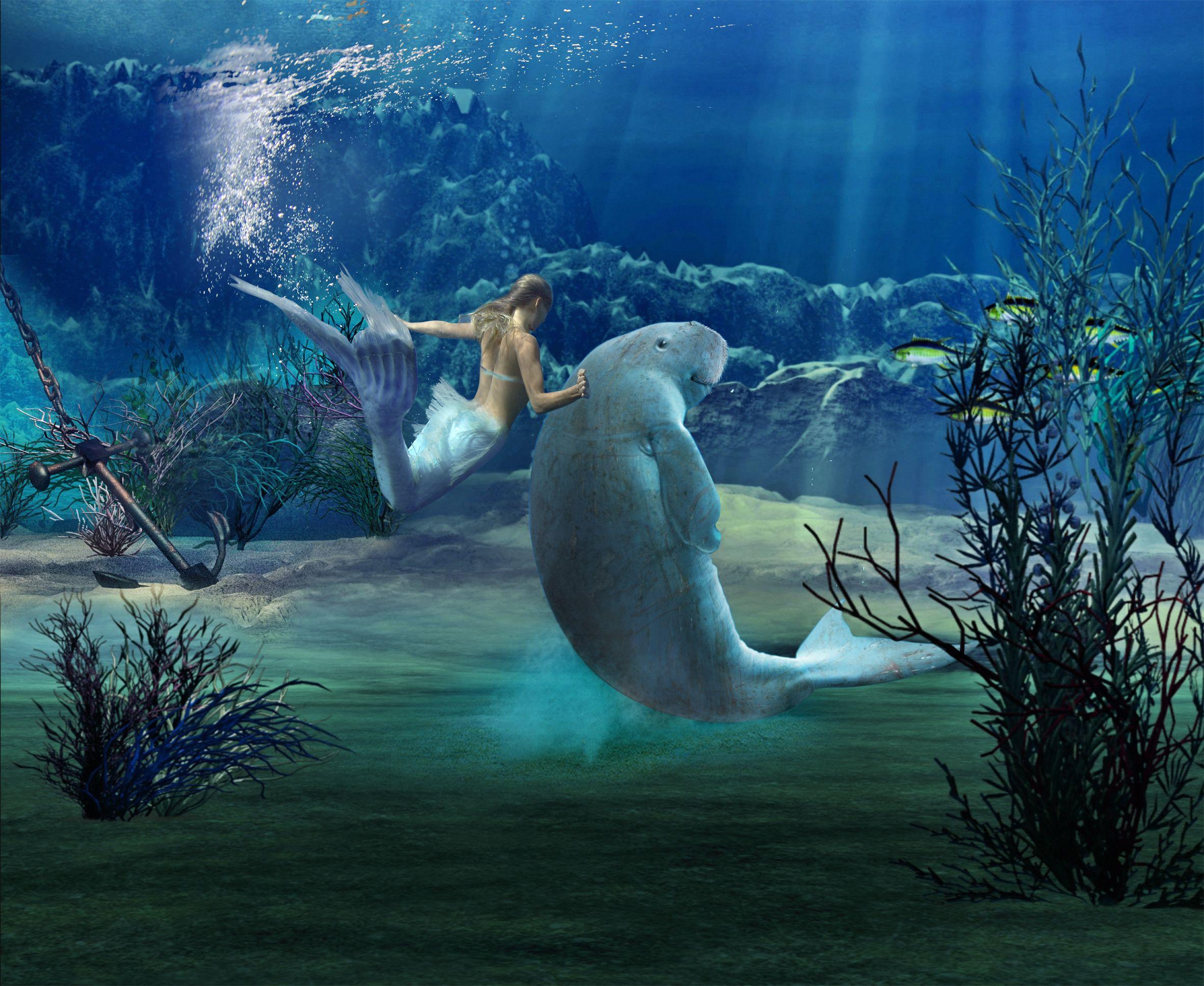 Mermaid pics | Mermaid...