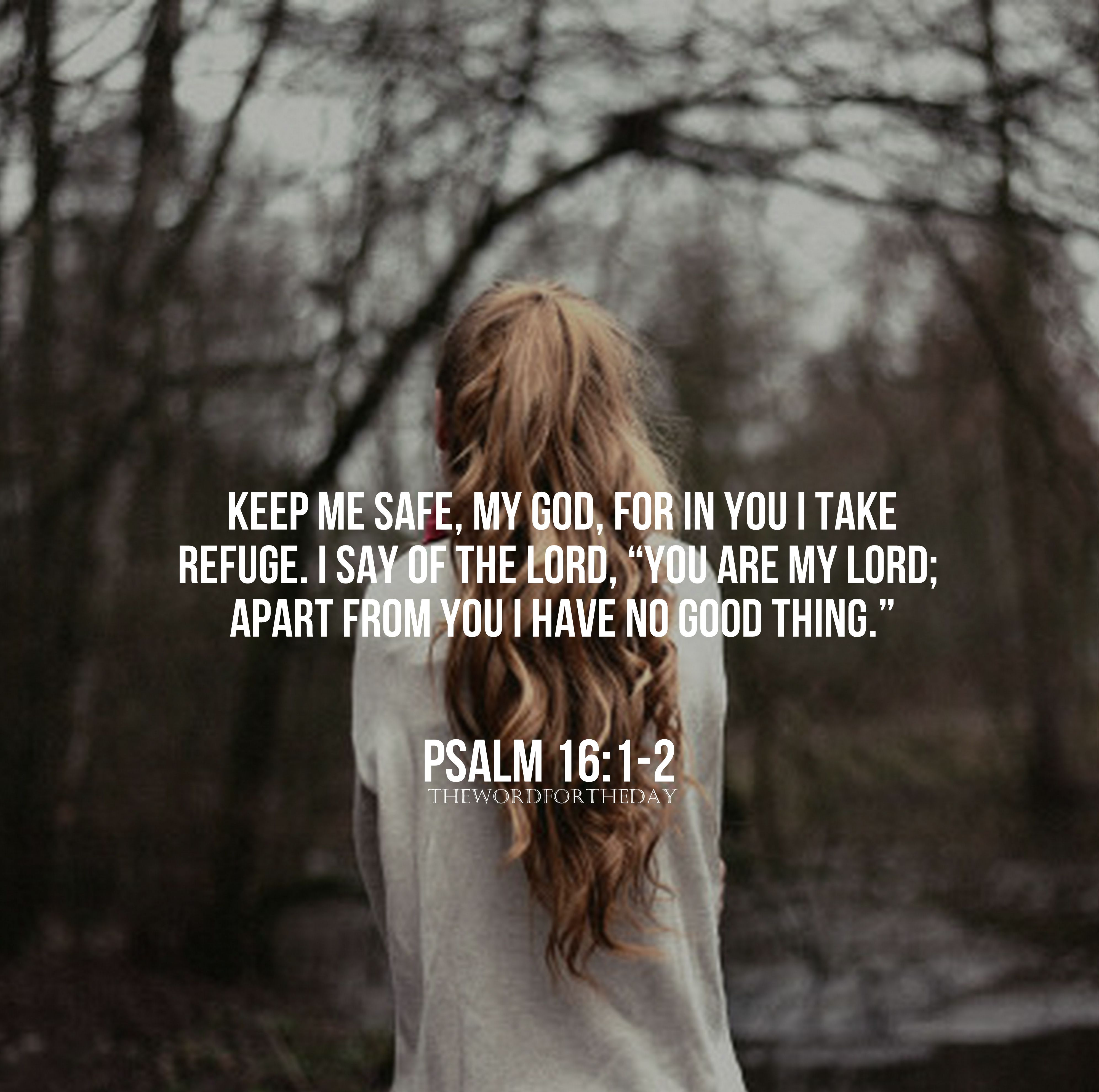 Psalm 16 Bible Quotes Bible Verse Christian Life Christian Blog Bible Quotes Scripture Verses Psalms