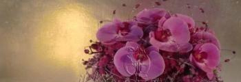 Phaleonopsis fucsia