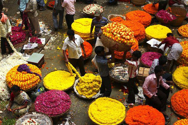 Wholesale vegetable market in bangalore dating