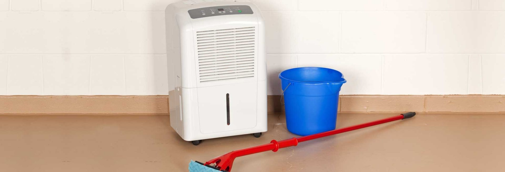 Best Dehumidifiers For Basements Crawl Spaces And Other Damp