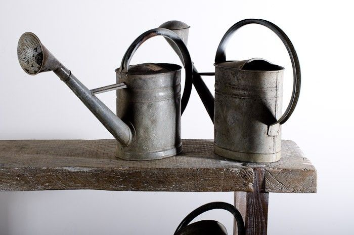 1910 watering can - Frog and Toad
