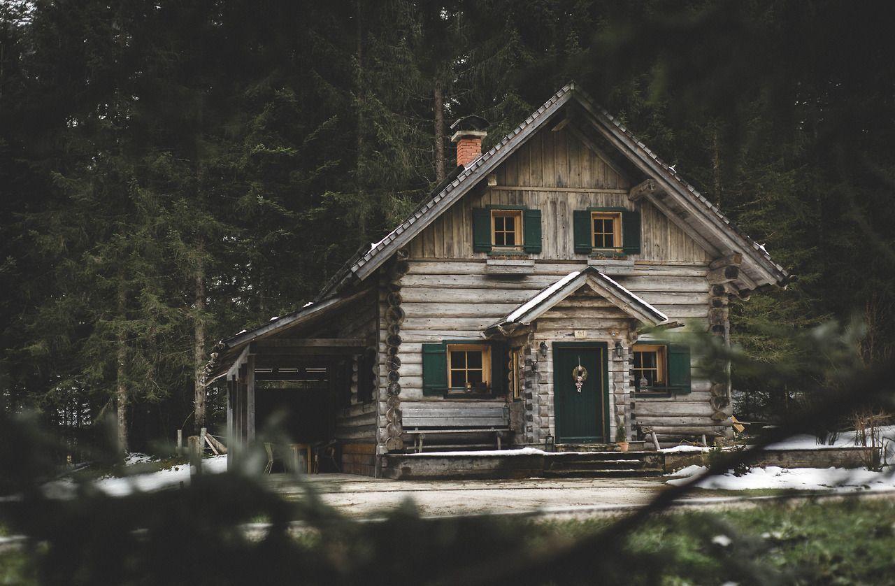 dirty woodsman cabin h tte im wald h tte und wohnen. Black Bedroom Furniture Sets. Home Design Ideas