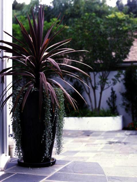 Petals Landscape Gardening Llc as Landscape Gardening ...